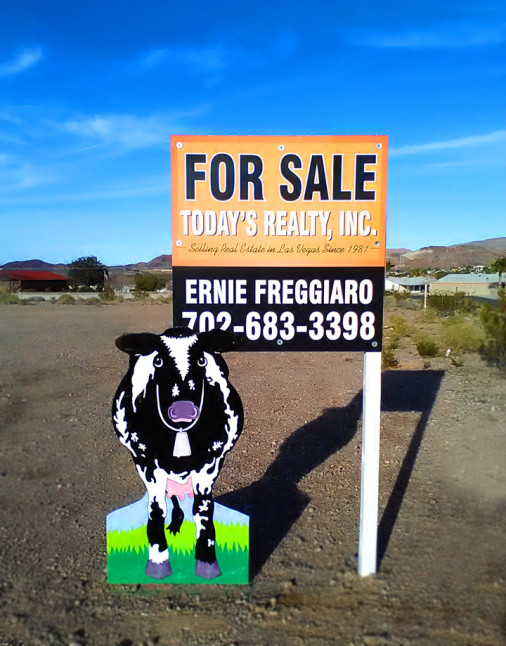 For Sale Todays Realty