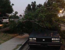 Storm Reeks Havoc Across The Las Vegas Valley. Clean Up Begins.
